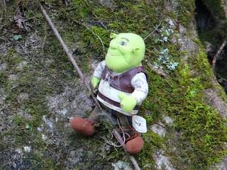 Roadside Toys - Shrek