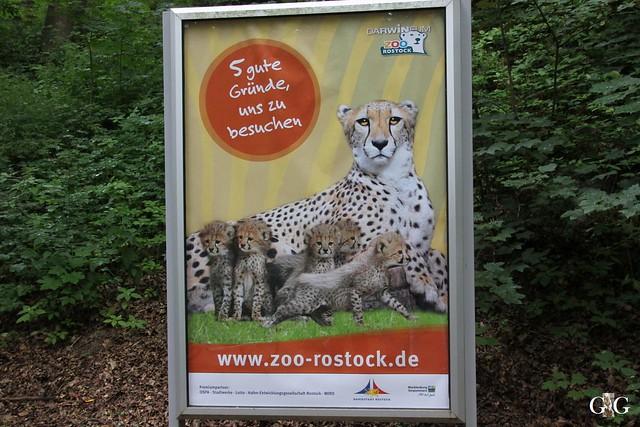 Ausflug Rostock 12.07.201590