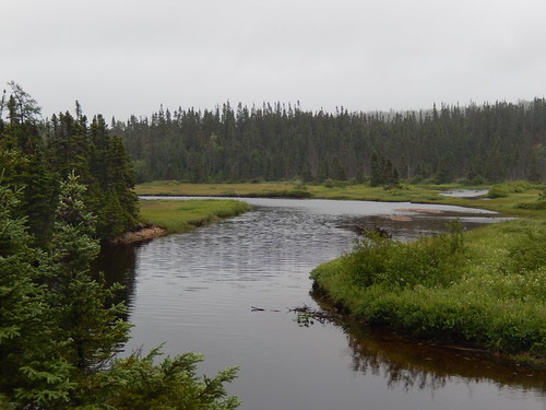 Terra Nova National Park - 2