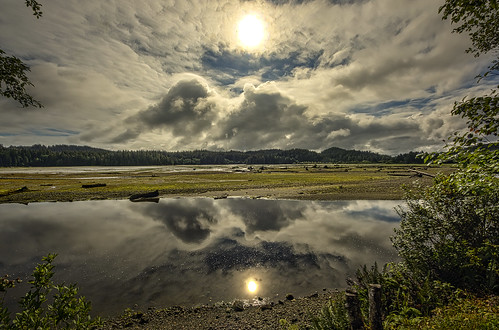 trees sea wild cloud sun canada color colour reflection tree nature colors rock clouds contrast forest port outdoors coast sand rocks colours bright sony perspective vancouverisland land ripples hdr highdynamicrange seasunclouds sigmaultrawide earthnaturelife wimvandem britishcolumbiaporthardy
