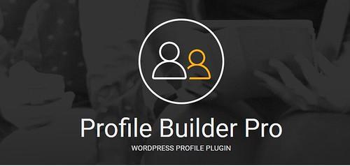 Profile-Builder-Pro WordPresS-Plugin