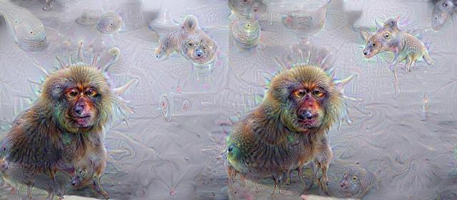 DeepDream3D snowmonkey