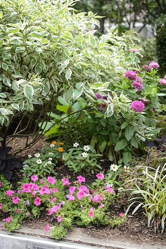FilipWolak-LSBID-Gardens-8361
