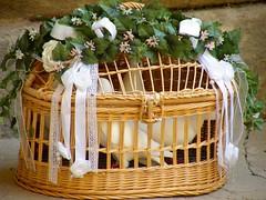 cage, wicker, basket,