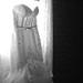 The Dress by 2lu22lu2