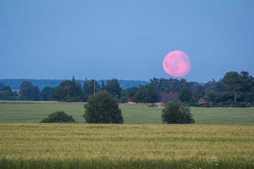 moon field redmoon mēness