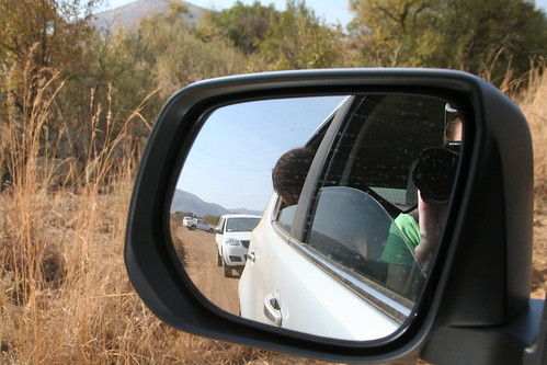Photos of the cars trying to get past all the elephants