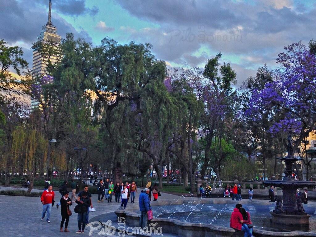 Mexico City's Alameda Park. Copyright 2015 Miguel Omaña.