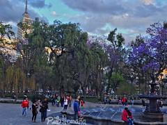 Mexico City's Alameda Park