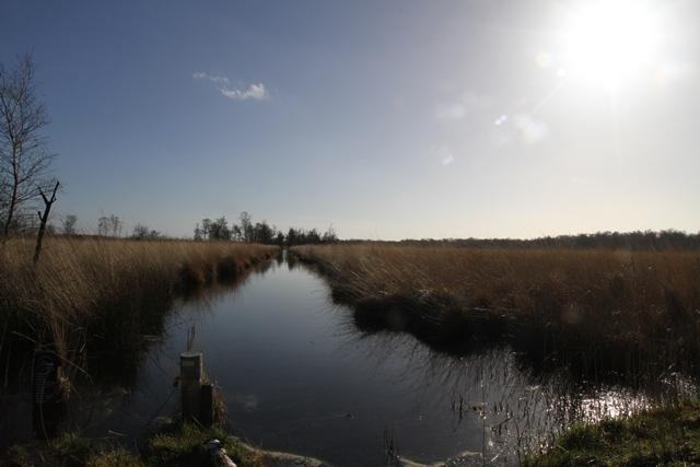 Hertogenpad_LAW13_NL_Wandelen_d9_5