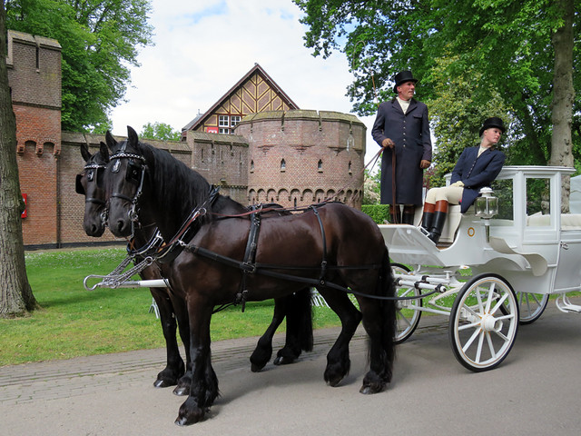 Picture-Perfect Horse & Carriage at Kasteel de Haar near Utrecht, Holland