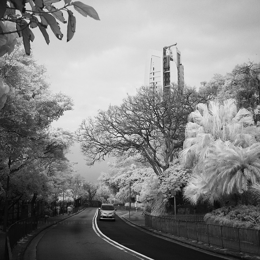 infrared snaps