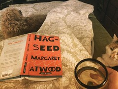 It's a lovely night for madness and mayhem. #margaretatwood