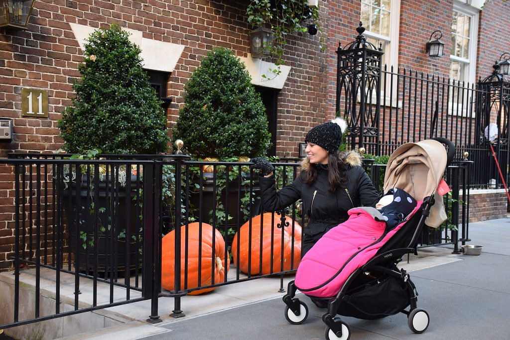 Todavía conservaban las calabazas de Halloween en Manhattan.