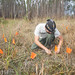 Hunting for flatwoods eggs by Pierson Hill