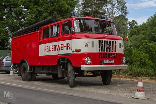 IFA W50 L (LF 16 - TS 8)