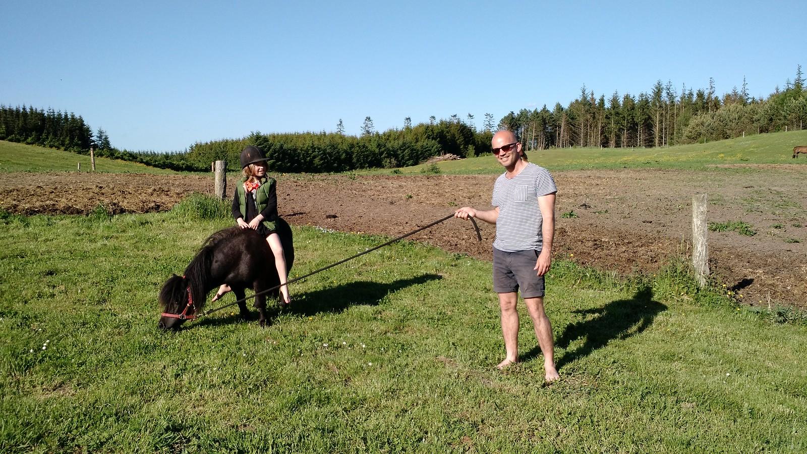 Grundlovsweekend og fest på farmen