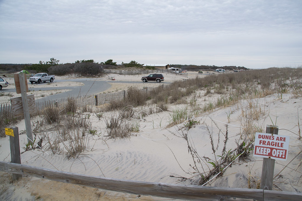 Access path to beach at Assateague State Park