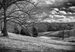 Rural Wanderings