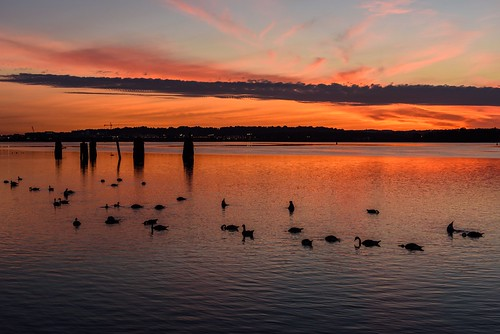 Dawn on the Potomac by Geoff Livingston