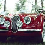 Vintage Red Jaguar at the Ho-Ho-Kus British Car & Motorcycle Show 2015/ Nikon FM2n/ Svema 125 color film