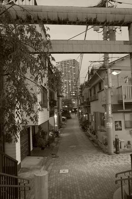 torii to Sumiyoshi shrine