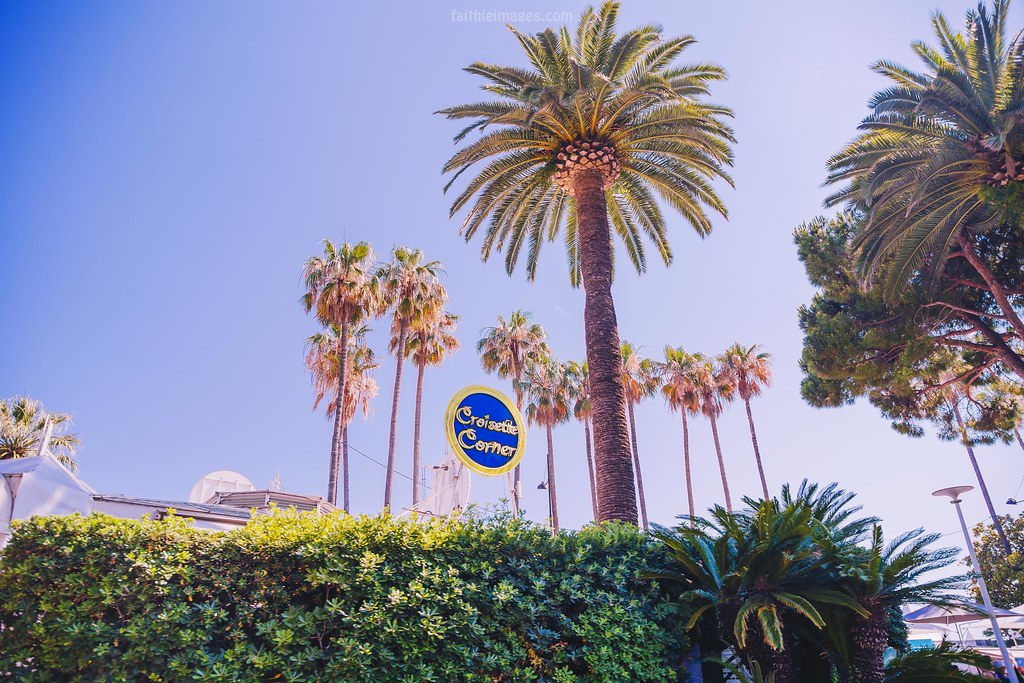 Palm trees and restaurants