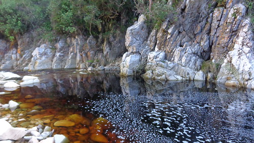 travel nature water rock river southafrica outdoors rocks rivers wilderness gardenroute tsitsikamma easterncape ottertrail tsitsikammanationalpark