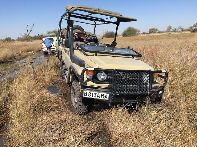 Botswana Rescue
