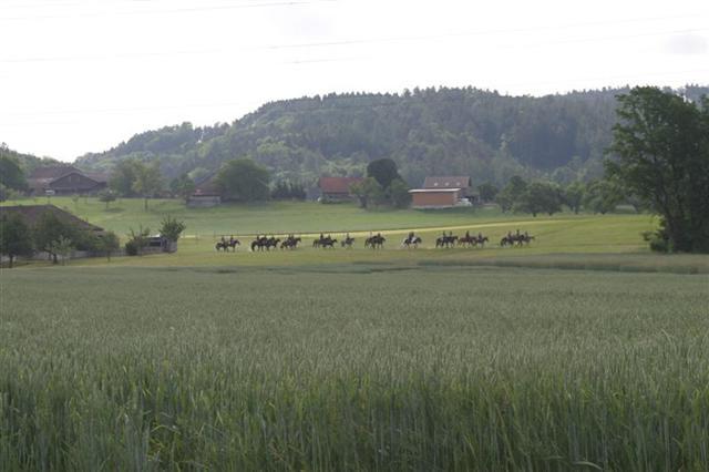 2007 Zmorgenritt