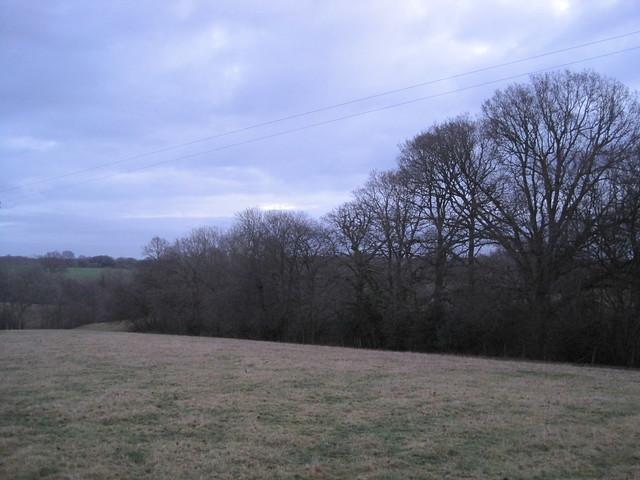 Winter view, Canon DIGITAL IXUS 95 IS
