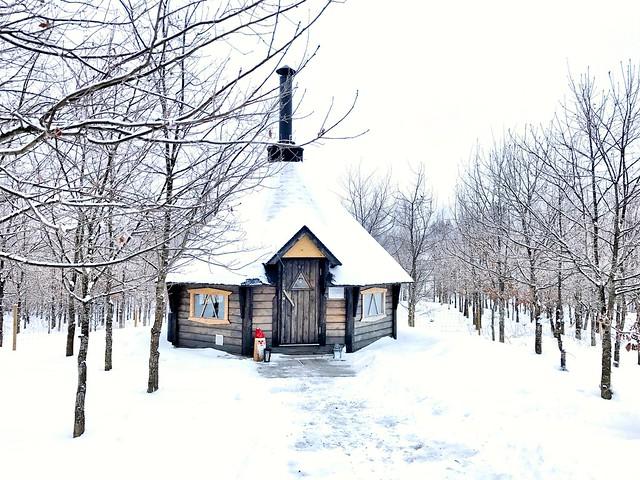 Lahti winter Finland 2017 82