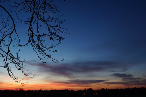 2017-01-30 Morning Sunrise - Week 5 [#4]