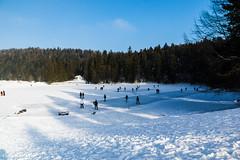 Lac Genin (Haut-Bugey) Janvier 2017