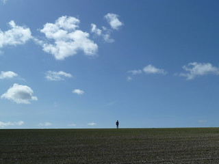 Walker in Field, Swallowcliffe Down