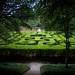 Maze/Williamsburg