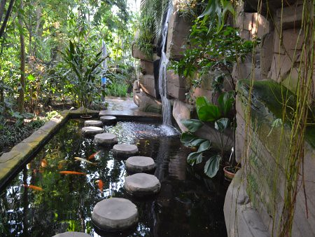 Gradina Botanica 2 5 Recomandari turistice in Berlin