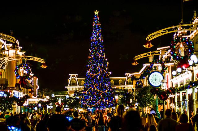 Main Street tree MK