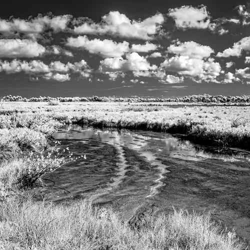 usa landscape infrared blackpointwildlifedrive cloud water ©edrosack sky centralflorida panorama merrittislandnationalwildliferefuge swamp florida bpwd cloudy ir minwr marsh titusville