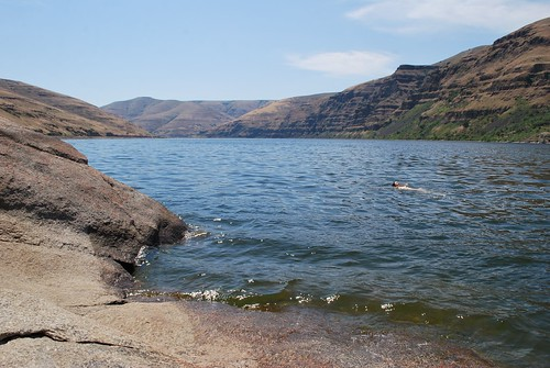 Swimming in the Snake River