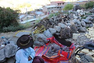 EPAF Field School - Hualla, Peru