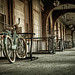 Bikes at Flagler College by le cabri
