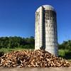 Hay everybody #fromwhereiride #silo #vermont