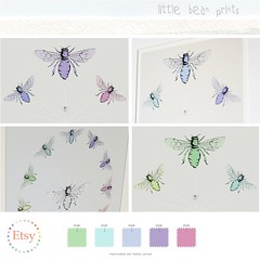 Little Bear Prints