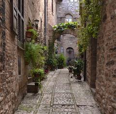 Spello - Umbria - Italia