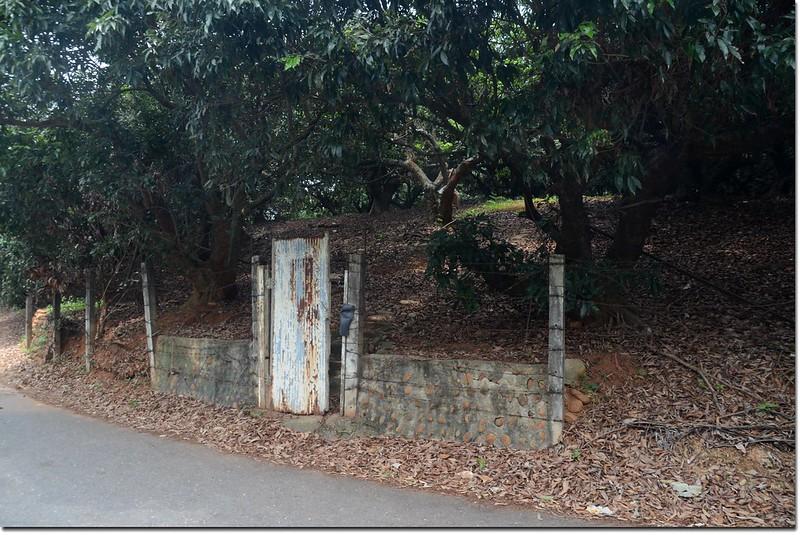 林厝坑土地調查局圖根點入口
