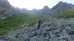 Aulnes et éboulis du haut du ruisseau de Stretta Grossa