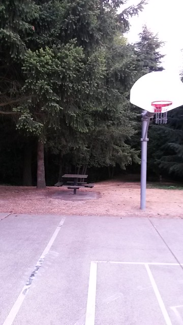 Dumbest place ever for a basketball hoop