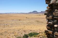 DSC02979 - NAMIBIA 2010