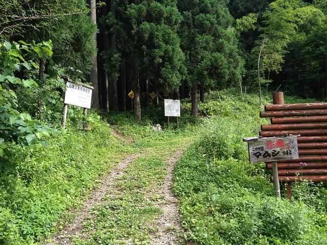 高山キャンプ場 滝谷林道